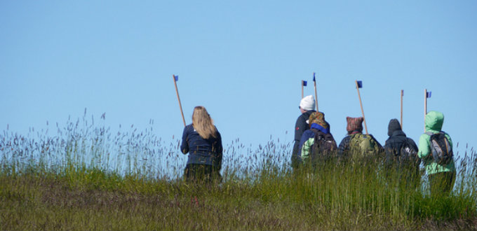 A new Icelandic custom? No, just tourists trying to keep arctic terns from picking their heads. PIC whatsallthisthen
