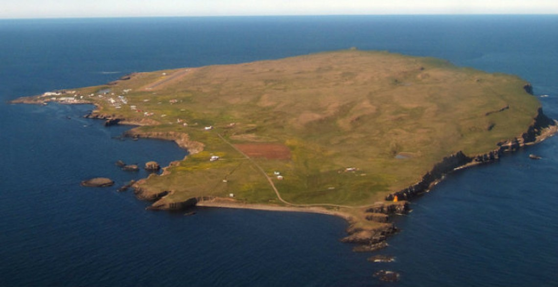 Three reasons to make a stop at Grimsey island in Iceland