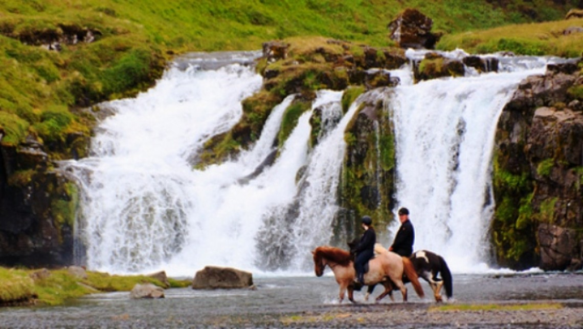 Horsing around in Iceland