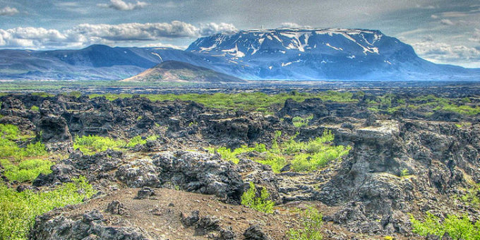 Green moss and shrubs cover ancient lava formations to the east of Myvatn lake creating such surreal beauty Van Gogh never could have imagined. PIC michael clarke stuff