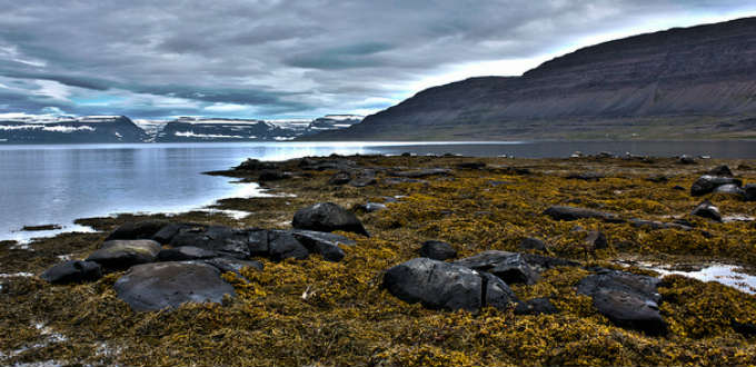 Desolate then and desolate now. The site of the only known mass murder in Iceland. PIC lauraobno.cat